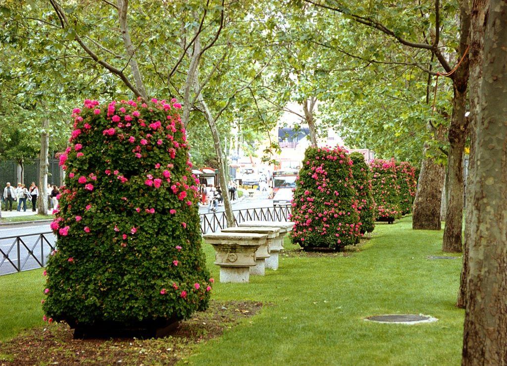 Torres Florals