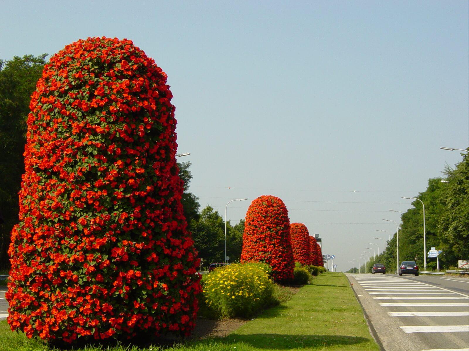Torres Florales