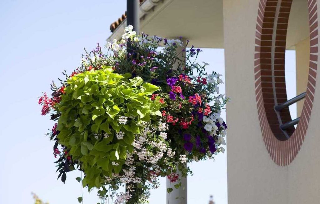 Vista de primavera su municipio